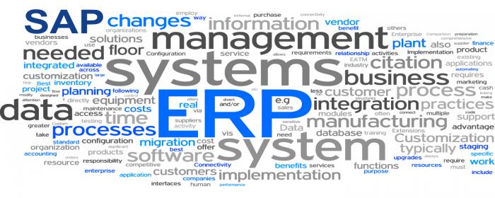 Les mots clés d'un projet SAP